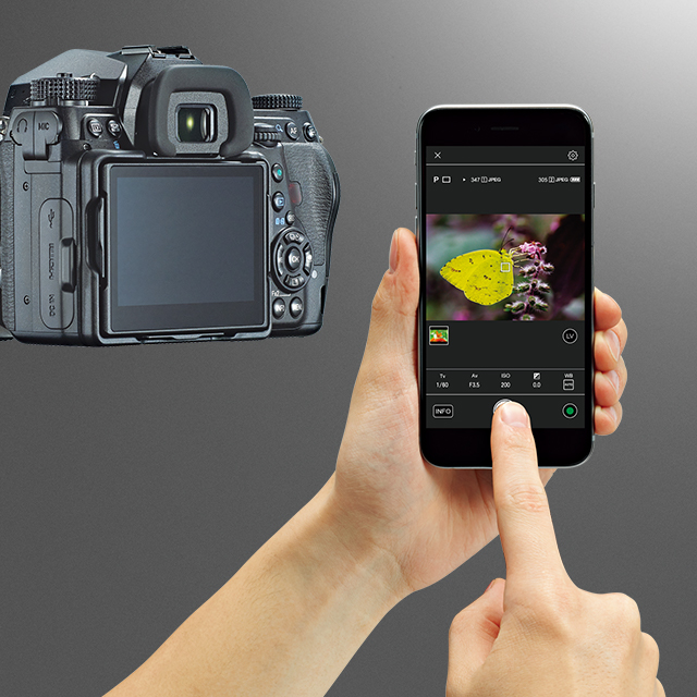 Image Sync / APP / DOWNLOAD / SUPPORT | RICOH IMAGING